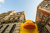 Giant Rubber Duck In Bilbao