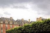 Place of Vosges and vegetation, sky of thunderstorm on a district of Paris  France