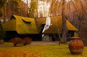 picture of dracula  - Beautiful old village house and near Bran Castle  - JPG