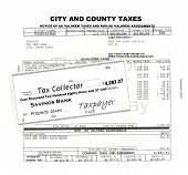 City and county local government property tax bill