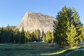 picture of granite dome  - View of Lembert Dome a granite dome rock formation in Yosemite National Park in the U - JPG