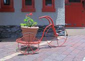 Red tricycle with flower pot