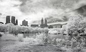Infrared Image Of The Central Park