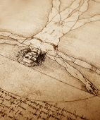 stock photo of leonardo da vinci  - Photo of the Vitruvian Man by Leonardo Da Vinci from 1492 on textured background - JPG