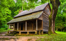 foto of cade  - The Henry Whitehead Cabin at Cade - JPG