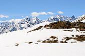 Snowcapped Alpine Arc In Spring