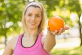 Fit blonde holding an orange on a sunny day
