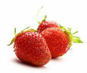 Ripe Strawberry On White Background