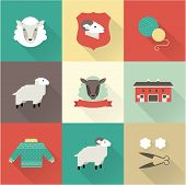 sheep vector set