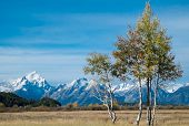 Grand Teton National Park during autumn
