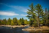 pic of wilder  - The rocky shores of a Canadian lake in the Ontario wilderness evergreen forest - JPG