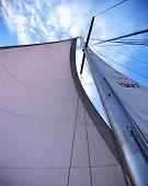 Sail & Mast
