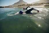 image of triathlon  - Triathlon swimmers churning up the water - JPG