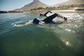 pic of triathlon  - Triathlon swimmers churning up the water - JPG