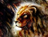 foto of lions-head  - beautiful painting of a lion head with a majesticaly peaceful expression profile portrait - JPG