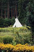 stock photo of wigwams  - Teepee or wigwam in the blossoming meadow - JPG