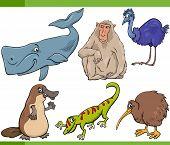 picture of platypus  - Cartoon Illustration of Funny Wild Animals Set - JPG