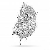 foto of feathers  - Artistically drawn - JPG
