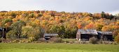 Autumn Colours, Rustic Barn