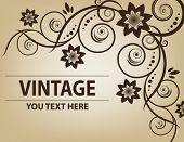 Vintage frame. Elegant. Beige. Asymmetrical. Crop