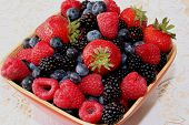 stock photo of fruit bowl  - Organic produce of healthy fruits in a bowl - JPG