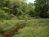 Scenery 012  Upstream