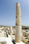 Agora Columns Delos Greece