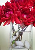 foto of flower arrangement  - close - JPG