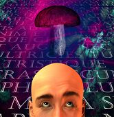 Mushroom and man