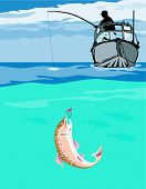 picture of brook trout  - Vector art on trout and salmon fishing - JPG