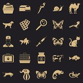 Vet Clinic Icons Set. Simple Set Of 25 Vet Clinic Icons For Web For Any Design poster