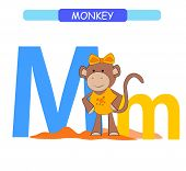 Letter M And Funny Cartoon Monkey. Animals Alphabet A-z. Cute Zoo Alphabet In Vector For Kids Learni poster