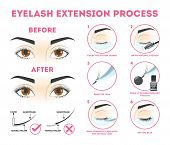 Eyelash Extension Guide For Woman. Infographic With Eyelashes poster