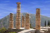 Delphi Colums