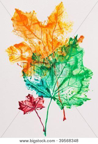 Постер, плакат: Кленовые листья отпечаток акварель живопись, холст на подрамнике