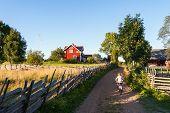 Child Riding A Bike In Rural Sweden