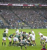 TWICKENHAM LONDON - NOVEMBER 23: English players wait at the breakdown at England vs South Africa, E