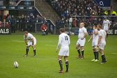 TWICKENHAM LONDON - NOVEMBER 23: Toby Flood prepares to take penalty at England vs South Africa, Eng