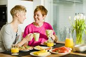 picture of lesbian  - Happy lesbian couple sits on the breakfast table - JPG