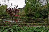 Garden of Claude Monet
