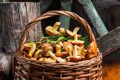 stock photo of spores  - Still life of yellow boletus mushrooms in a basket - JPG