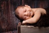 stock photo of wooden crate  - 9 day old smiling newborn baby boy sleeping in a vintage weathered wooden crate - JPG