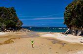 Golden Beach Abel Tasman National Park