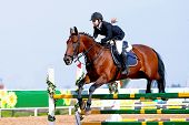 stock photo of overcoming obstacles  - Equestrian sport - JPG