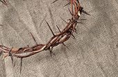 foto of humility  - crown made of thorns - JPG