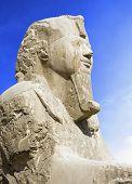 Detalhe da Esfinge de alabastro XIX dinastia (1341-1200 A.C.). Antiga Memphis (UNESCO lista do património mundial