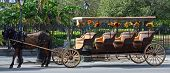 stock photo of katrina  - A horse and buggy in New Orleans Louisiana after recovery from Hurricane Katrina - JPG