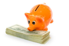picture of save money  - piggy bank with money isolated on white - JPG
