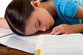 child sleeps while she studies