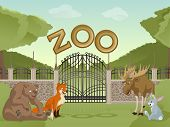 Zoo With Cartoon Animals